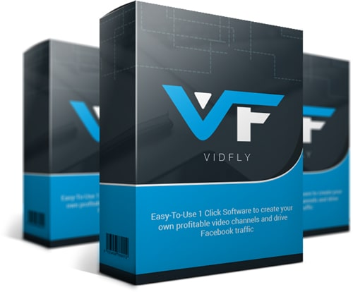vidfly-review